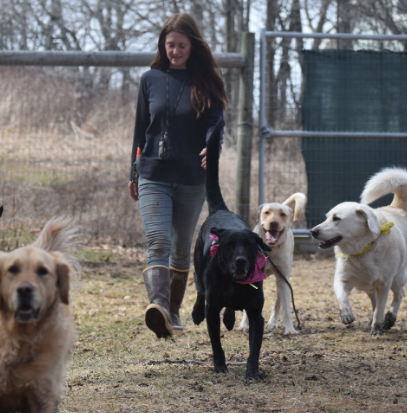 Woman Quit Job On Wall Street To Start Dog Rescue