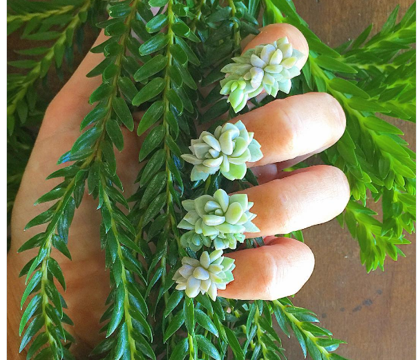 Live Succulent Nail Art Is A Thing And It's Pretty Neat