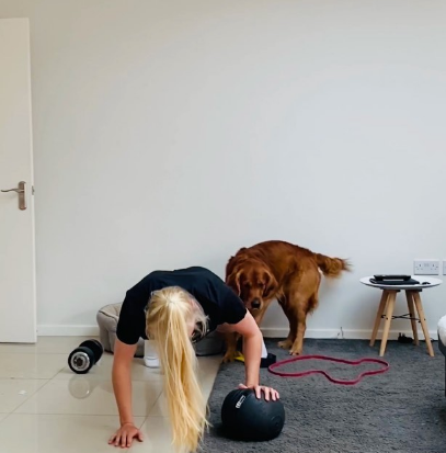 Dogs And Cats Ruin Their Owners Home Workouts And It's Pretty Funny