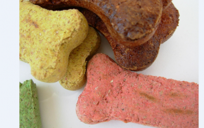 Vegan Dog Biscuits Your Dog Will Love